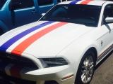 Mustang_Stripe